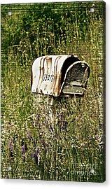 Empty Mailbox At 35476 Acrylic Print by Gwyn Newcombe