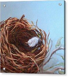 Empty Nest Acrylic Print by Irene Corey