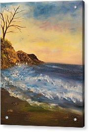 Empty Shore Acrylic Print by Shiana Canatella