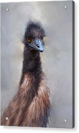 Acrylic Print featuring the photograph Emu by Robin-Lee Vieira