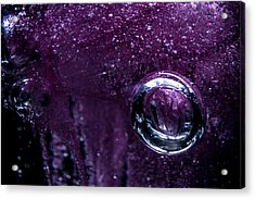 Acrylic Print featuring the photograph Encased by Eric Christopher Jackson