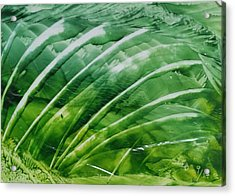 Encaustic Abstract Green Fan Foliage Acrylic Print