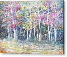 Enchanced Tree Pageant Acrylic Print by Penny Neimiller