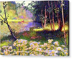 Enchanted By Daisies, Modern Impressionism, Wildflowers, Silver Birch, Aspen Acrylic Print by Jane Small