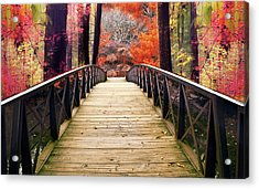 Acrylic Print featuring the photograph Enchanted Crossing by Jessica Jenney
