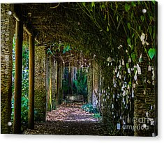 Enchanted Entrance Acrylic Print