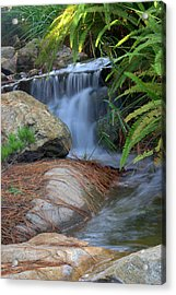 Enchanted Forest Acrylic Print by Brad Scott