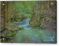Acrylic Print featuring the digital art Enchanted Forest One by Randy Steele