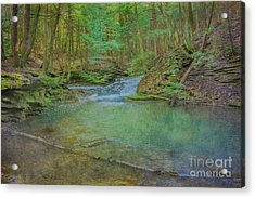 Acrylic Print featuring the digital art Enchanted Forest Two by Randy Steele