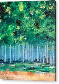 Enchanted Poplars Acrylic Print