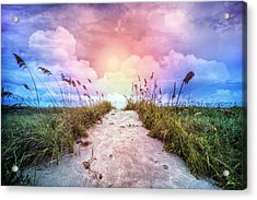 Enchanting Path Acrylic Print by Debra and Dave Vanderlaan