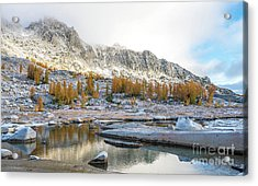 Enchantments Natures Fall Colors Palette Acrylic Print