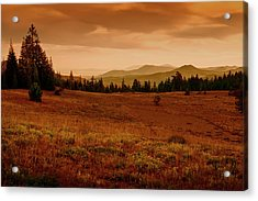 Acrylic Print featuring the photograph End Of Day by Frank Wilson