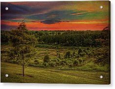 Acrylic Print featuring the photograph End Of Day by Lewis Mann