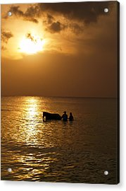 End Of The Day Acrylic Print by Linda Morland