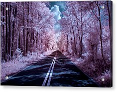 Acrylic Print featuring the photograph End Of The Road by Louis Ferreira