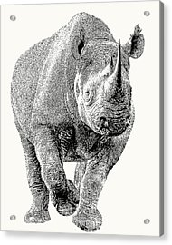 Endangered Black Rhino, Full Figure Acrylic Print