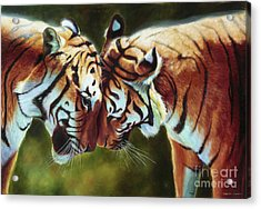 Endangered Moments Acrylic Print