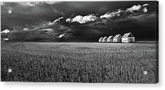 Acrylic Print featuring the photograph Endless Sky by John Poon
