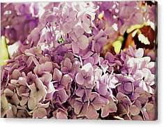 Endless Summer Color Acrylic Print by JAMART Photography