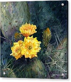 Engelmann Prickly Pear Cactus Acrylic Print