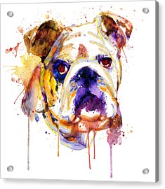 Acrylic Print featuring the mixed media English Bulldog Head by Marian Voicu