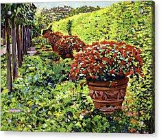 English Flower Pots Acrylic Print by David Lloyd Glover