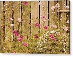 English Garden Acrylic Print by Susan Maxwell Schmidt