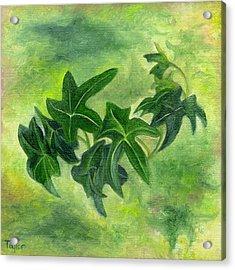 English Ivy Acrylic Print