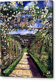 English Rose Trellis Acrylic Print by David Lloyd Glover