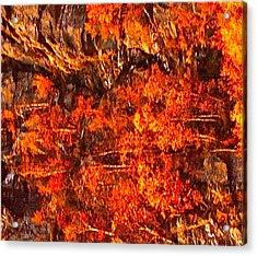 Enigma Orange Acrylic Print by Chris  Riley