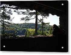 Acrylic Print featuring the photograph Enjoying The View II by Greg DeBeck