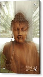 Enlightened Buddha Acrylic Print