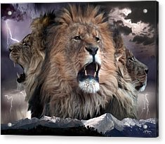 Enough Acrylic Print by Bill Stephens