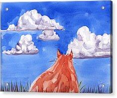 Ernesto's Dream Acrylic Print