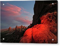 Erocktic Acrylic Print by Jerry LoFaro