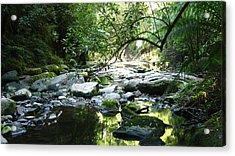 Erskine River Acrylic Print