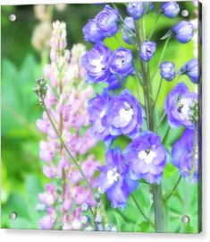 Acrylic Print featuring the photograph Escape To The Garden by Bonnie Bruno