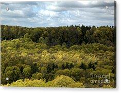 Escarpment Spring 2 Acrylic Print