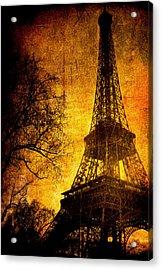 Esthetic Luster Acrylic Print by Andrew Paranavitana