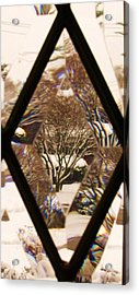 Etched Window View Acrylic Print by Anna Villarreal Garbis