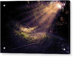 Ethereal Light Acrylic Print