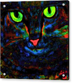 Ethical Kitty See's Your Dilemma Light 2 Dark Version Acrylic Print