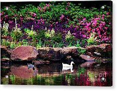 Ethreal Beauty At The Azalea Pond Acrylic Print by Tamyra Ayles