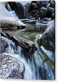 Etruded Log-end In Merced River II Acrylic Print by D Kadah Tanaka