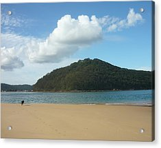 Ettalong Beach Acrylic Print by Adrianne Wood