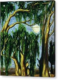 Eucalyptus Moon Acrylic Print by Helen O Hara