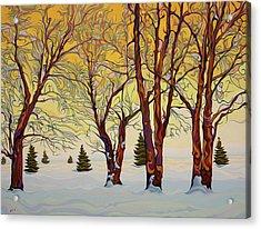 Euphoric Treequility Acrylic Print