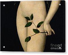 Eve Acrylic Print by The Elder Lucas Cranach