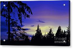 Evening Blue Acrylic Print